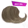 Pony Haarteil Clip In 25-30g Seitliche Form #8/613 Mix + 2 Tressenclips